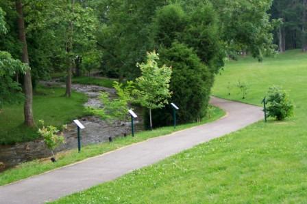 Steele Creek Park Arboretum